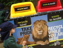 ACTSmart – Zoo bin waste recycling poster design