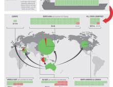 RSPCA – Responsive Infographics